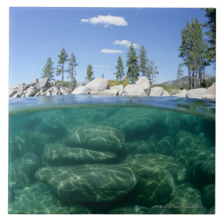 Above and below Lake Tahoe Tile
