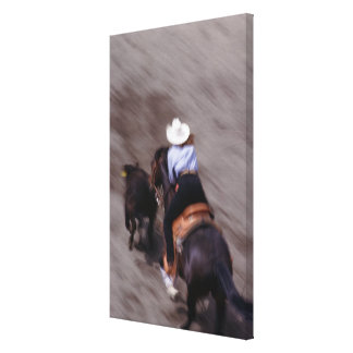 Above at Rodeo Canvas Print