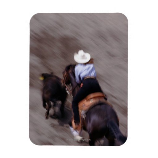 Above at Rodeo Rectangular Magnets