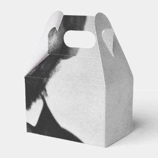 Abraham Lincoln Portrait Favour Boxes
