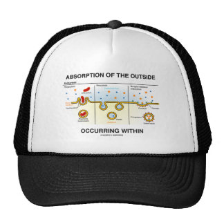 Absorption Of The Outside Occurring Within Hats