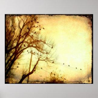 Abstarct Flock Of Birds Poster
