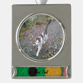 Abstract alien pattern silver plated banner ornament