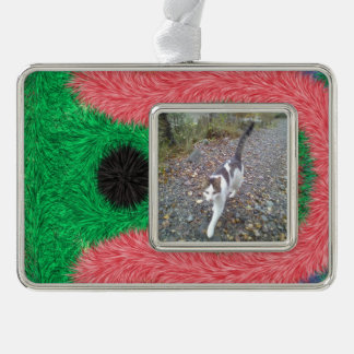 Abstract alien pattern silver plated framed ornament