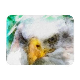 Abstract American Bald Eagle Rectangular Photo Magnet