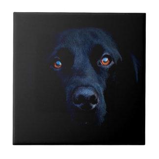Abstract Animal Dark Dog Tile