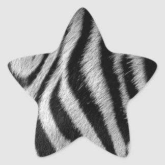 Abstract Animal Zebra Eye Star Sticker