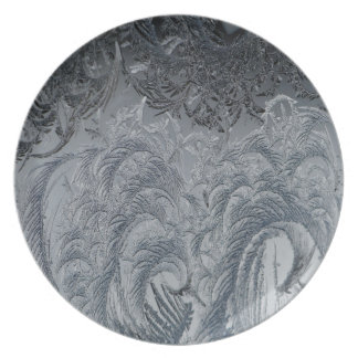 Abstract Background Grey Feathers Party Plates