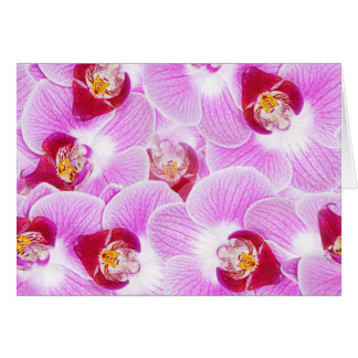 Abstract Background of an Orchid Flower Photograph Card