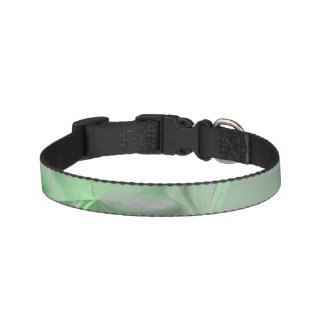 abstract background pet collar