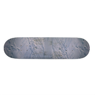 Abstract Bird tracks and feather imprint in the sn Skate Board