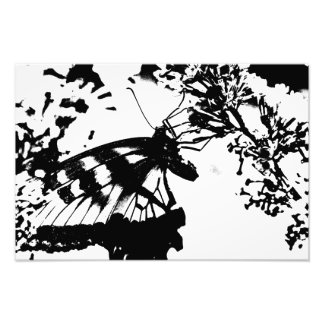 Abstract Black and White Butterfly Print