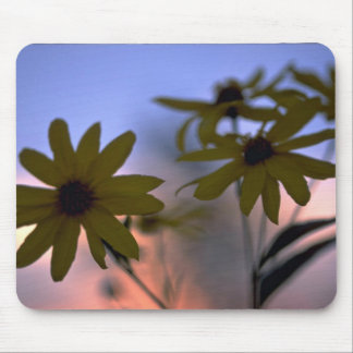 Abstract Black-eyed Susans Mouse Pad