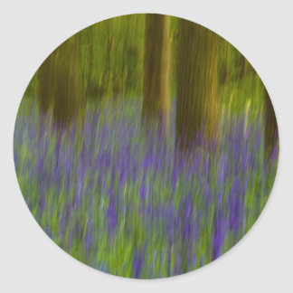 Abstract Bluebell Woods Classic Round Sticker
