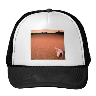 Abstract Bone Dry Death Valley Mesh Hat