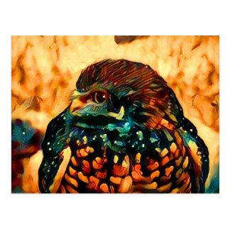 Abstract Burrowing Owl Postcard