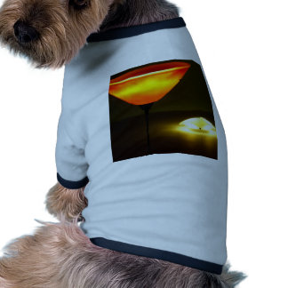 Abstract Colors Lamp Brights Pet Clothes