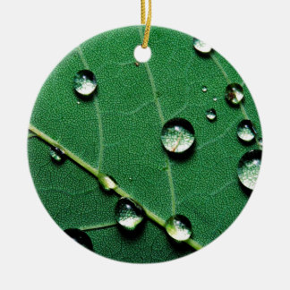 abstract colors raindrops on a fallen leaf.jpg christmas ornament