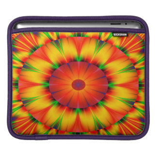 Abstract Design Bright Concentric Circles iPad Sleeve