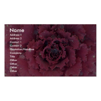 Abstract Detail of ornamental cabbage Pack Of Standard Business Cards