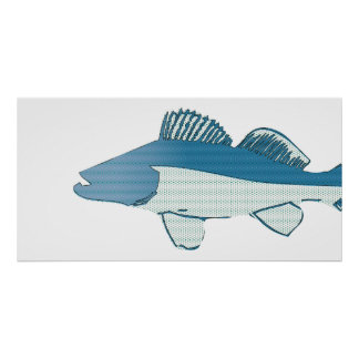 abstract fish- bass poster