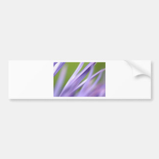 abstract flower, from the flower gift collection bumper sticker