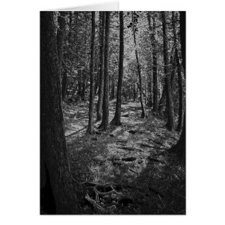 Abstract Forest Card