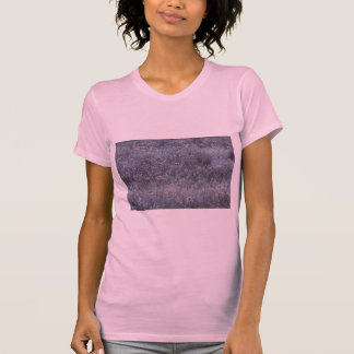 Abstract Frost-covered autumn field T Shirts