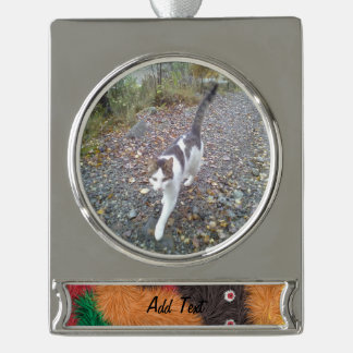 Abstract furry person paattern silver plated banner ornament