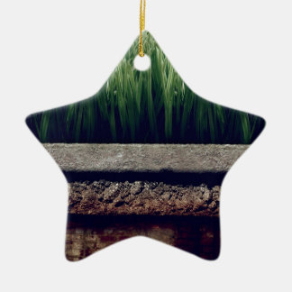 Abstract Garden Greener Grass Other Side Ornaments