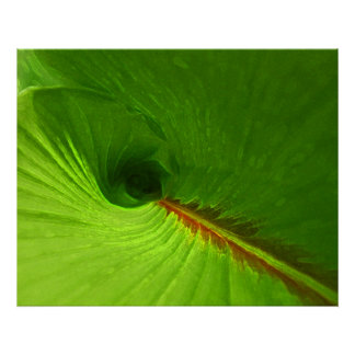 Abstract Ginger Leaf Spiral Poster