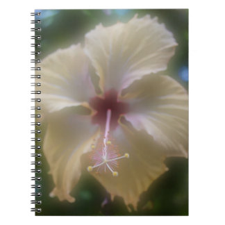 Abstract Hibiscus Flower Notebook
