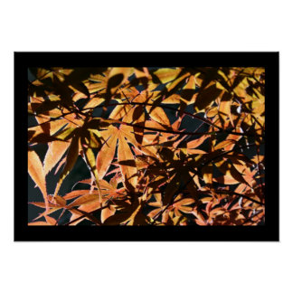 Abstract & japanese Maple Poster