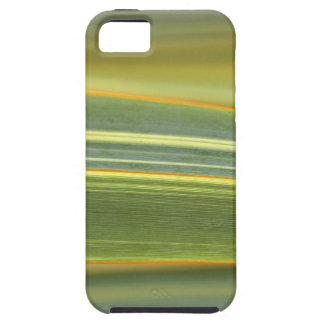 abstract leaves from the flower gift collection iPhone 5 cases