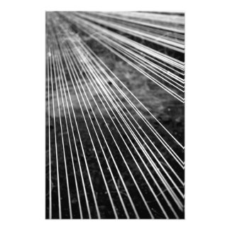 Abstract lines photo