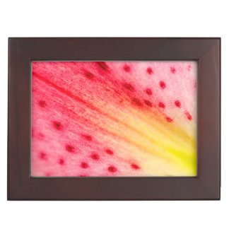 Abstract Macro Pink Lily Flower Gift Box
