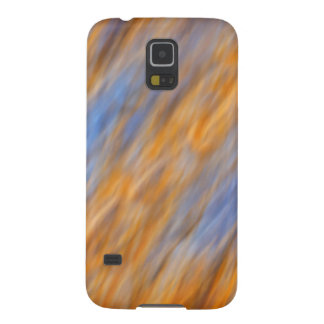 Abstract of autumn leaves and sky galaxy s5 cover