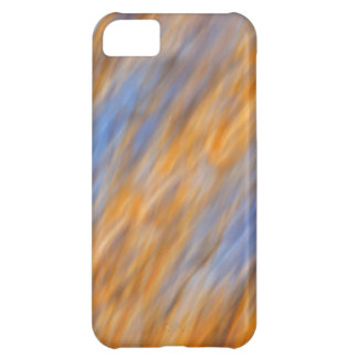 Abstract of autumn leaves and sky iPhone 5C case