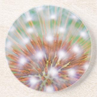 Abstract of dandelion seed head coaster