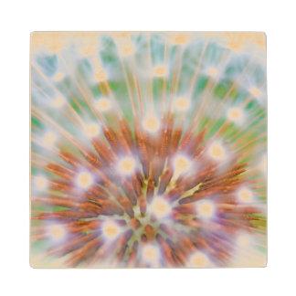 Abstract of dandelion seed head maple wood coaster