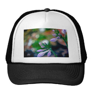 ABSTRACT OF FLORAL BUDS CAP