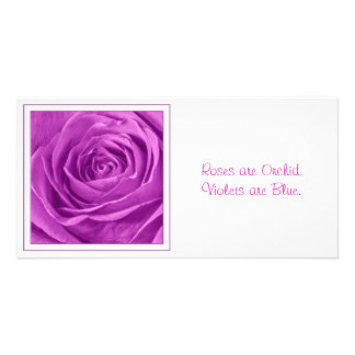 Abstract Photograph of an Orchid Colored Rose Personalized Photo Card