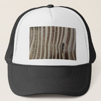 abstract picture of wood trucker hat