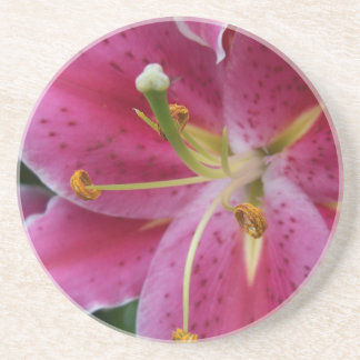 Abstract Pink Lily Coaster