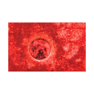Abstract Red Digital Painting on Real Photography Canvas Print