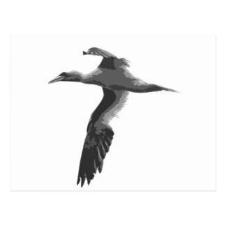 Abstract Sea Birds Postcards