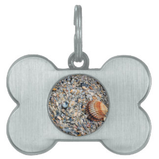 abstract shells on the beach pet tag