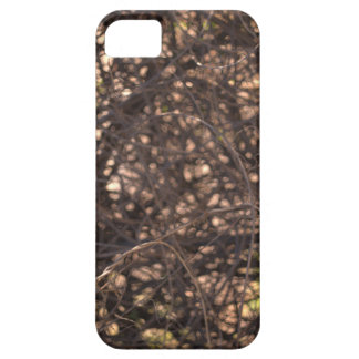 Abstract Tree iPhone 5 Cases