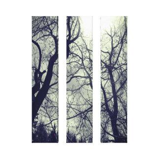 Abstract tree sun black & white photo canvas