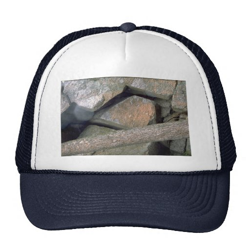 Abstract Tree trunk and broken granitic rock Hat